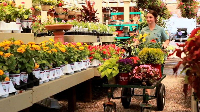 female employee pushing cart of flowers and plants at Bremec Garden Center