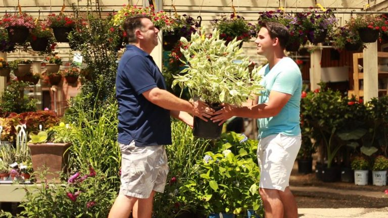 two men exchanging a potted plant at Bremec Garden Center