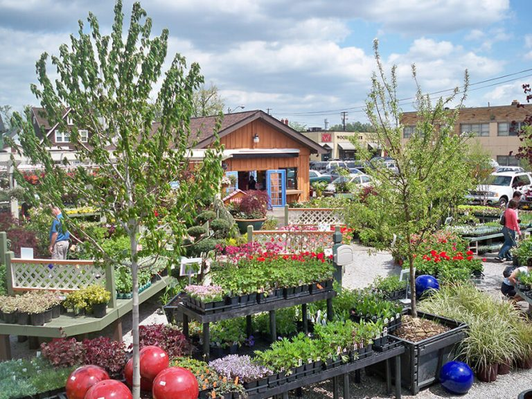 plants and trees for sale at Bremec Garden Center