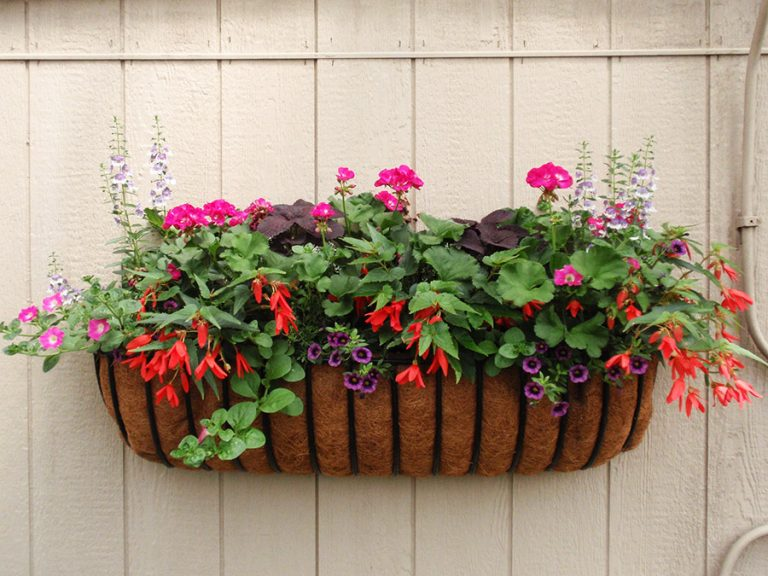 hanging window basket with assorted pink, red and purple flowers