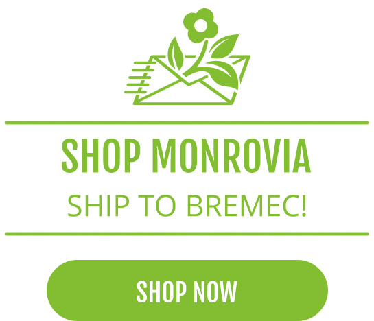 Shop Monrovia - Ship to Bremec!