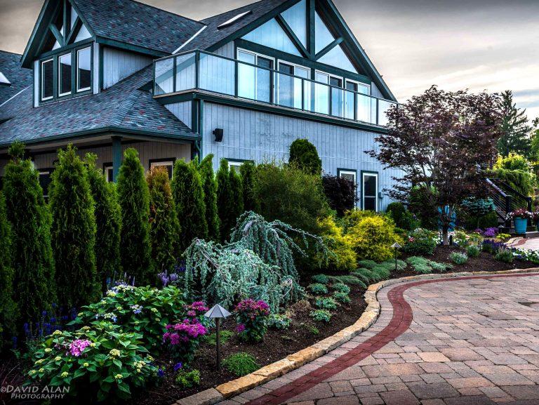 Best Landscape Design and Installation Team