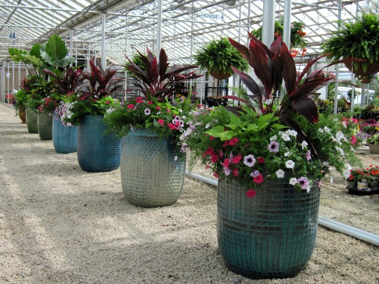 Best Customer Container Planters