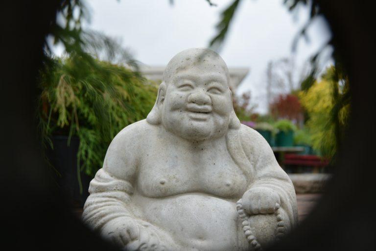 Buddha Statue in Highland Heights Garden Center