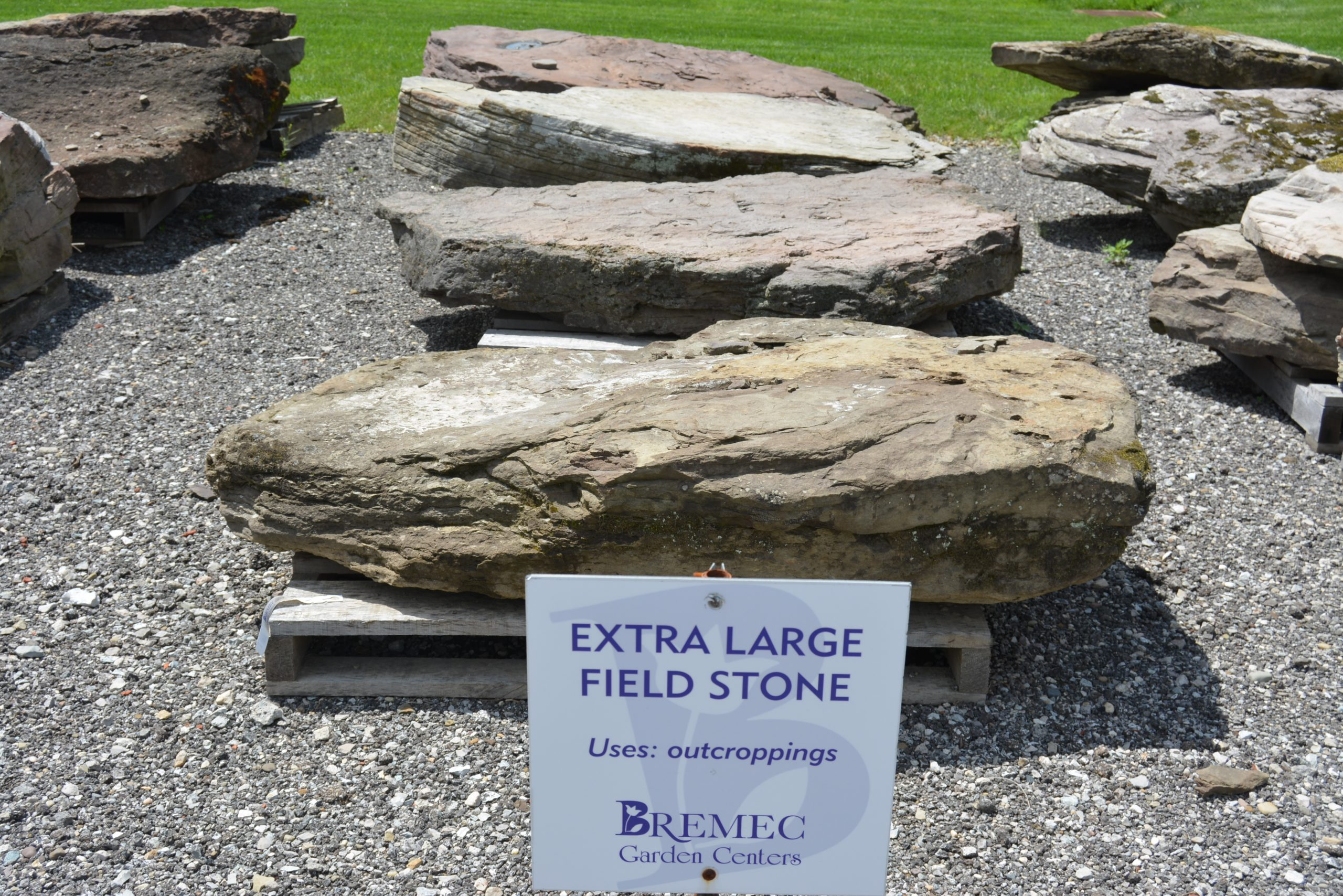 Extra Large Field Stone