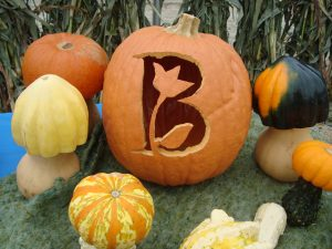Bremec Pumpkin Carving