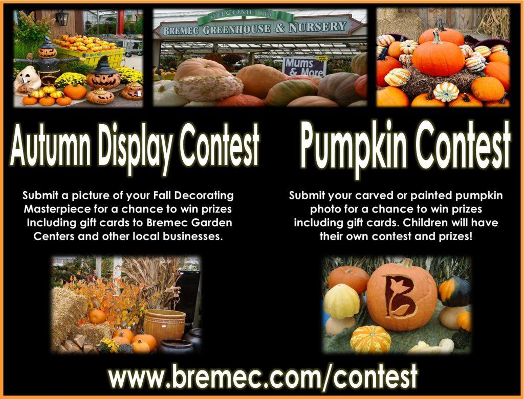 Autumn Decoration Contest