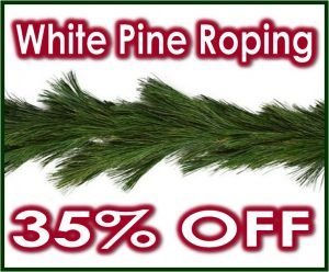 White Pine Roping