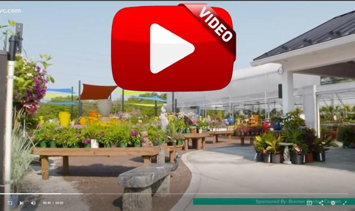 Perennial Paradise Bremec Garden Centers
